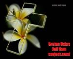 fotomontaza.php?s_vjest_id=70&sretan-uskrs-zeli-vam-savjest-com
